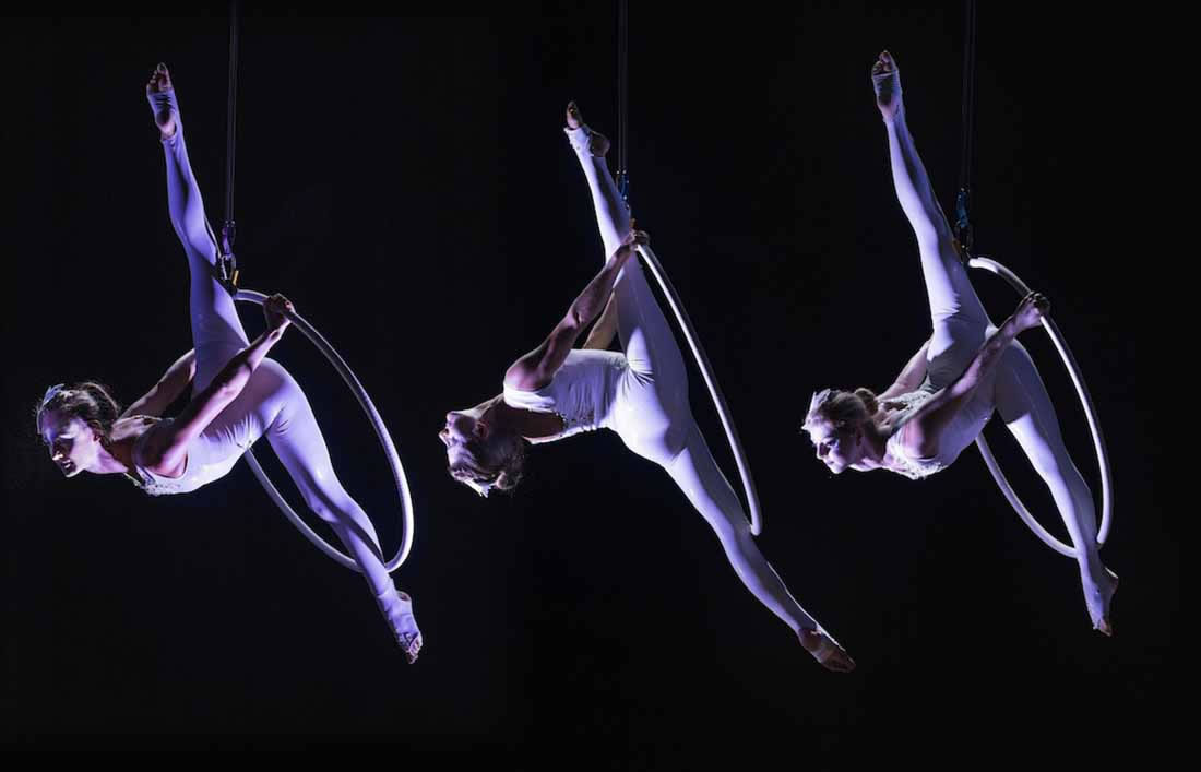 Aerial Shows - Hoop Gallery - Corporate troupe