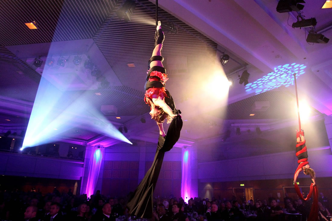 Aerial Shows - Silks Gallery - ICC - West Midlands Fire Service