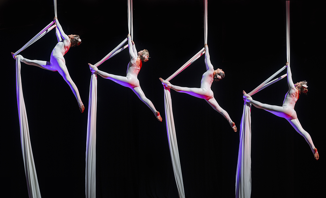 Aerial Troupe Corporate