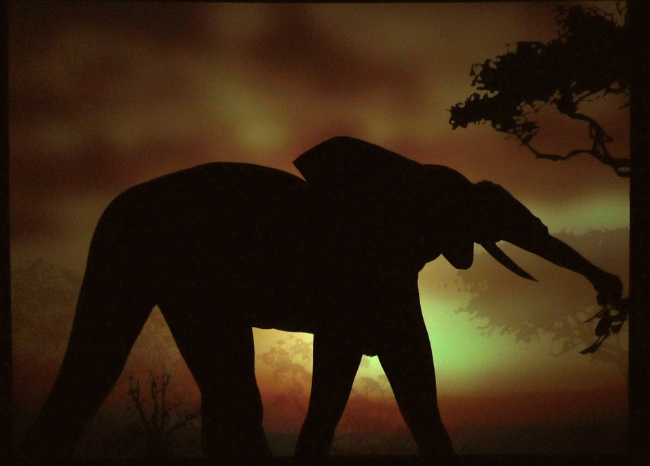 Shadow Shows - Connect Gallery - Elephant 2